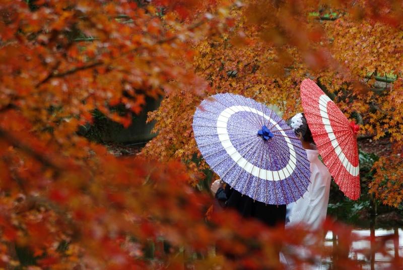京都のフォトウエディング撮影スポットとおすすめプラン