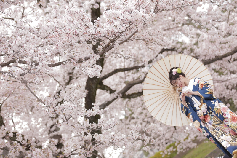 京都町家すたじお_トップ画像5