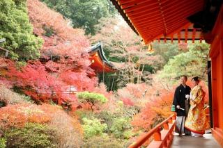 161238_京都_紅葉 和装 毘沙門堂