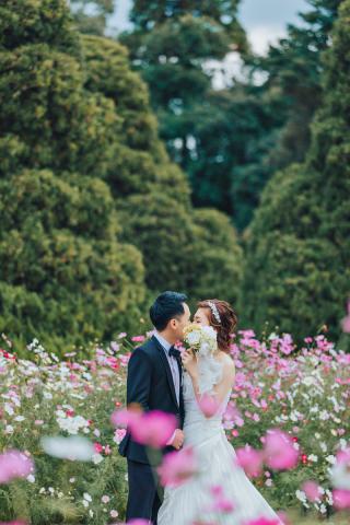 319905_京都_ロケ撮影:京都府立植物園