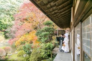 161244_京都_紅葉 和装 毘沙門堂