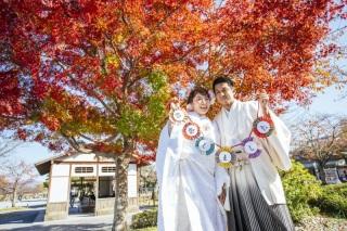 83575_京都_嵐山散策