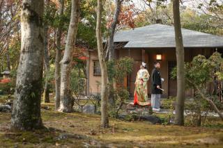 244253_兵庫_神社仏閣・庭園(和装)