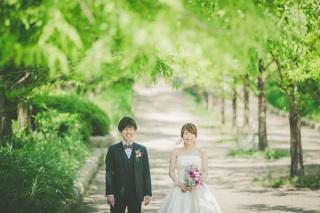 222998_兵庫_季節の花・公園(洋装)