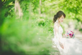 222992_兵庫_季節の花・公園(洋装)