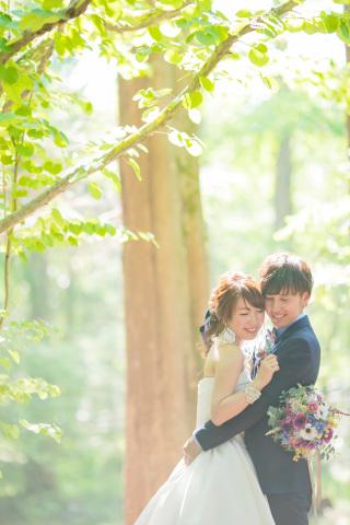 222993_兵庫_季節の花・公園(洋装)