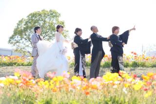 223001_兵庫_季節の花・公園(洋装)