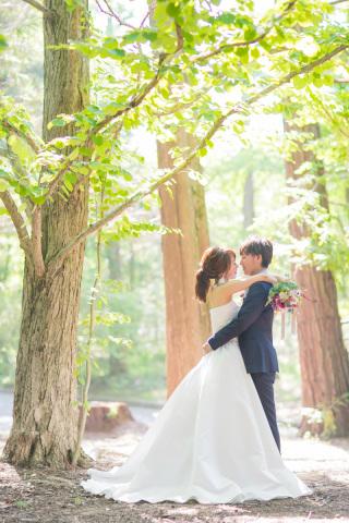 222994_兵庫_季節の花・公園(洋装)