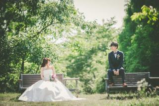 222996_兵庫_季節の花・公園(洋装)