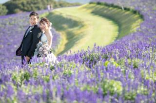 335881_兵庫_季節の花・公園(洋装)