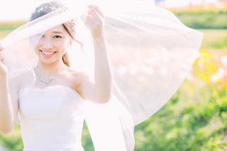 223015_兵庫_季節の花・公園(洋装)