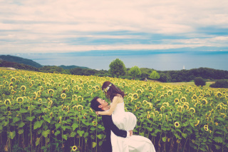 223011_兵庫_季節の花・公園(洋装)