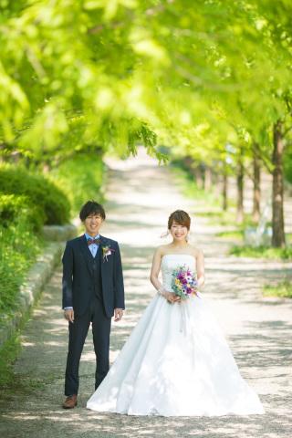222999_兵庫_季節の花・公園(洋装)