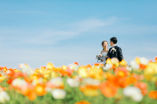 223014_兵庫_季節の花・公園(洋装)