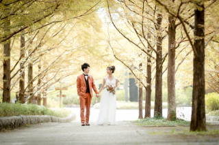 335869_兵庫_季節の花・公園(洋装)