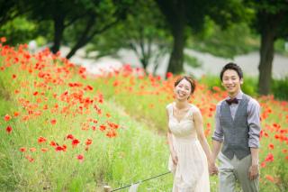 224684_大阪_洋装ロケーション(季節の花・ガーデン)
