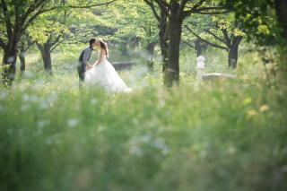 280979_大阪_洋装ロケーション(季節の花・ガーデン)