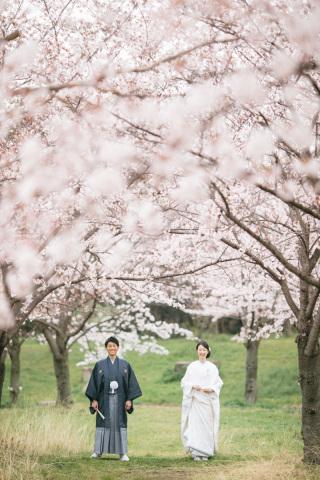 224780_大阪_桜ロケーション(ドレス・和装)