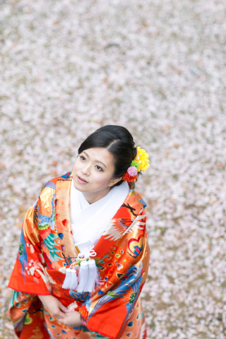 155480_大阪_桜ロケーション(ドレス・和装)