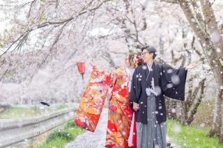 224770_大阪_桜ロケーション(ドレス・和装)