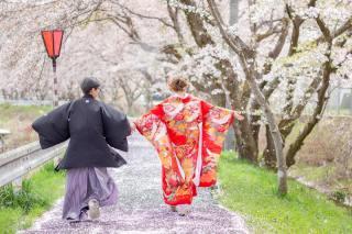 224771_大阪_桜ロケーション(ドレス・和装)