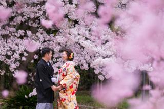 155472_大阪_桜ロケーション(ドレス・和装)
