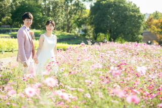 280989_大阪_洋装ロケーション(季節の花・ガーデン)