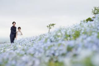 224697_大阪_季節の花・ガーデン(ドレス)
