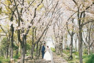 280993_大阪_洋装ロケーション(季節の花・ガーデン)