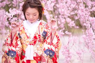 155474_大阪_桜ロケーション(ドレス・和装)