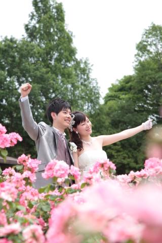 83484_埼玉_ロケーションフォト バラ園フォト