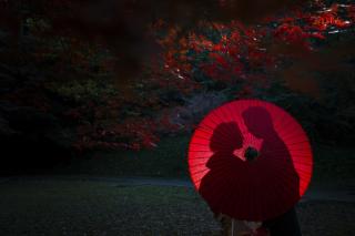 197805_神奈川_ベストショット PhotoJellish