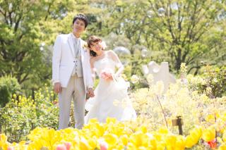 63380_東京_桜&菜の花のフォトウエディング