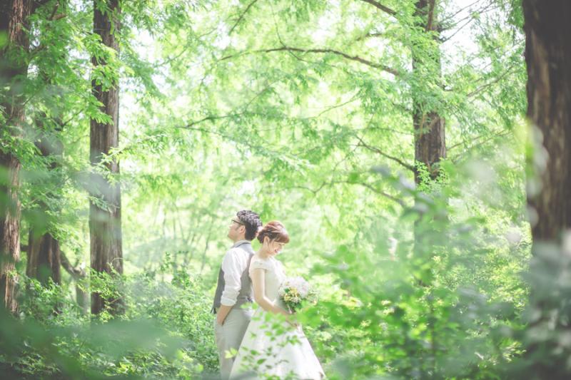 阿部写真館 大阪本町 靭公園前_トップ画像1