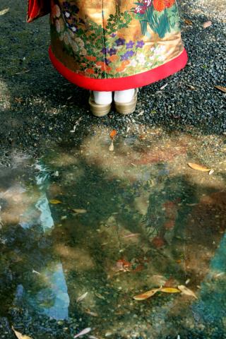 196704_東京_庭園フォト 6月