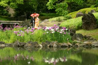 196710_東京_庭園フォト 6月
