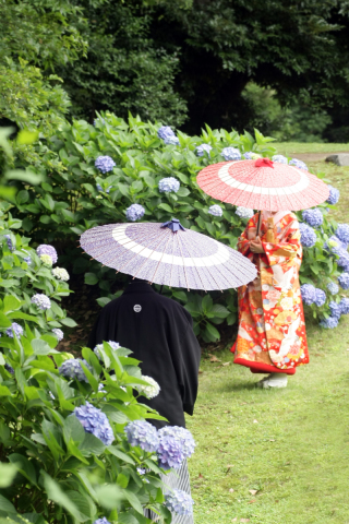 196715_東京_庭園フォト 6月