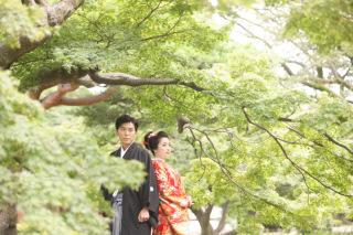 196688_東京_庭園フォト 夏
