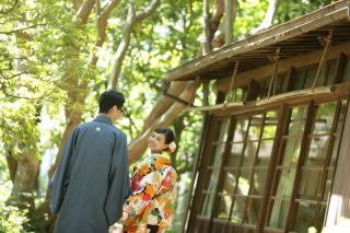 196696_東京_庭園フォト 夏