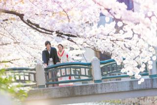 141760_京都_和装ロケーション(祇園巽橋)