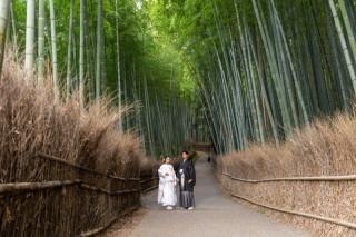 312511_京都_嵐山ロケーションフォト