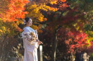312492_京都_嵐山ロケーションフォト
