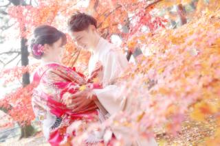 173025_愛知_桜/紅葉