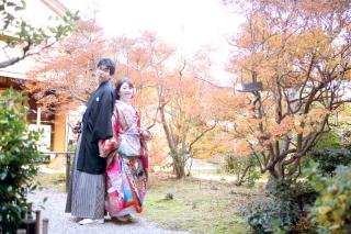 158964_愛知_桜/紅葉