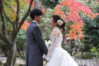 261765_愛知_桜/紅葉