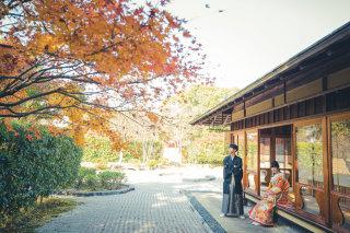 241261_熊本_白川公園茶室&藤崎宮ロケフォト