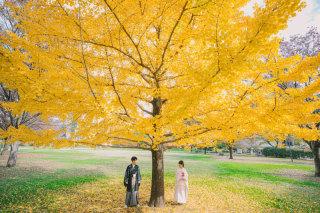 241264_熊本_白川公園茶室&藤崎宮ロケフォト