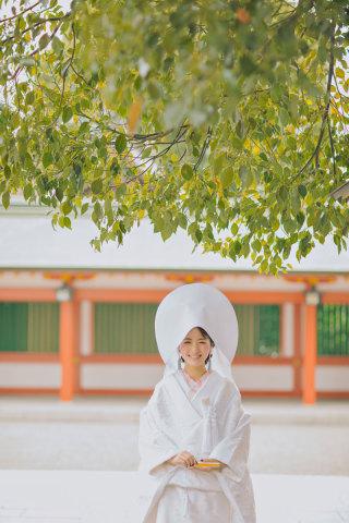 241249_熊本_白川公園茶室&藤崎宮ロケフォト
