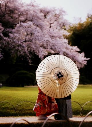 127707_岡山_梅・桜和装ロケーション