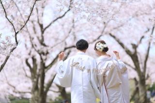 265215_岡山_梅・桜和装ロケーション